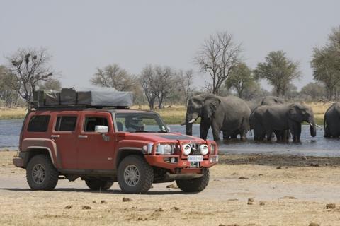 HUMMER H3 African Elephants